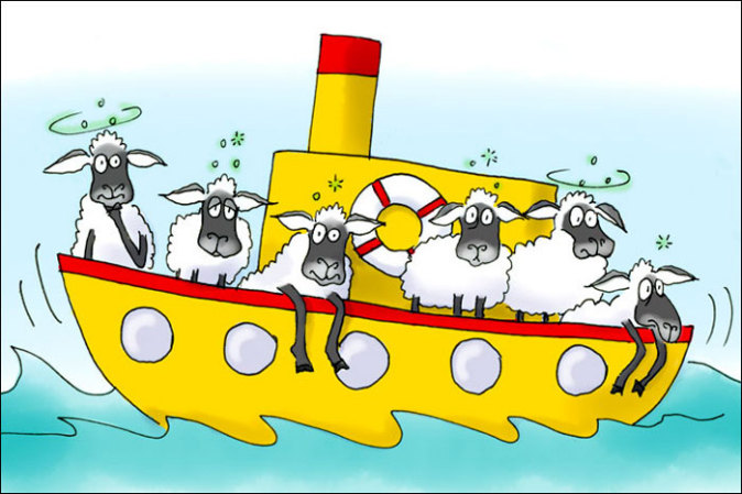 sheep and ship