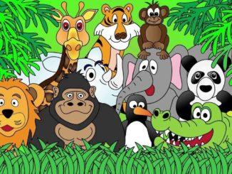 зоопарк арт